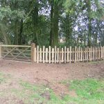 Cleft chestnut fencing with gate surrounding trees
