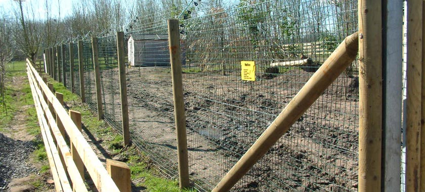 Wildlife Enclosure Wooden Posts and Netting