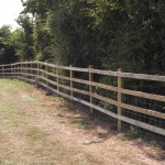 Sheep Post and Rail Fencing
