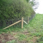 Sheep Stock Netting Fencing