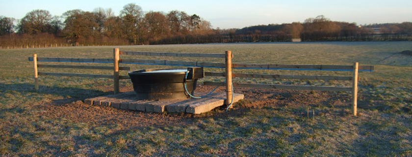 Water Trough Against Post and Rail Fencing in Field