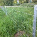 Metal Clipex Fencing With Wire Mesh