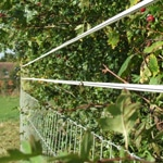 Electric horse tape and netting against hedge