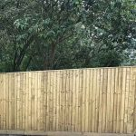 Wooden feather edge board fencing in front of trees