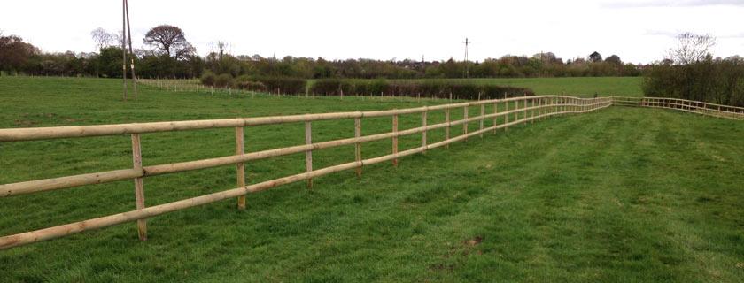 Post & rail paddock fencing in field