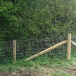 Sheep Stock Netting With Wooden Posts