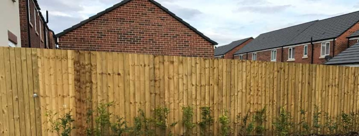 Suddenstrike fencing timber feather edge