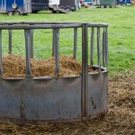 livestock feeder in field filled with hay
