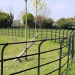 Cheshire Estate Fencing