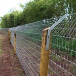 Otter netting and wooden fence posts