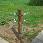 Corner of electric cattle fence with wooden post