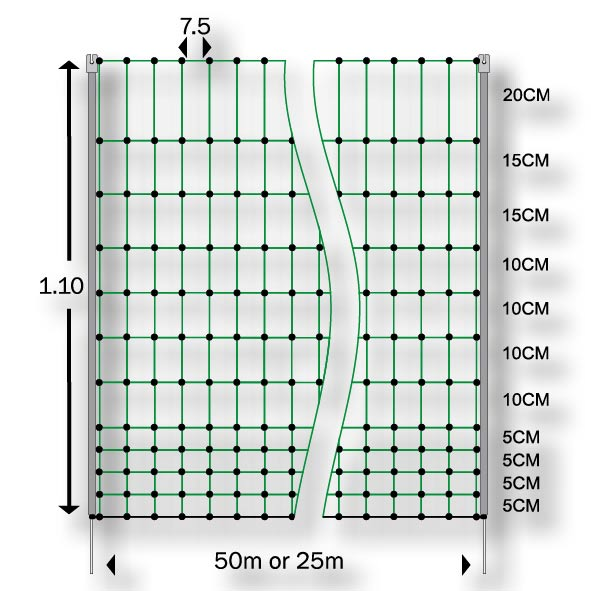 Diagram of chicken netting measurements