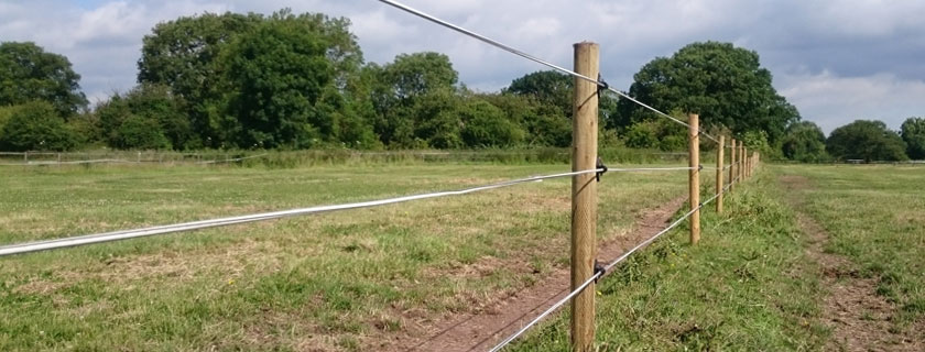 Electric horse tape with wooden posts in field