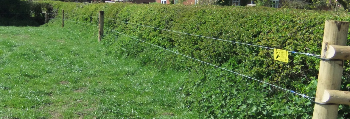 Suddenstrike fencing electric fencing