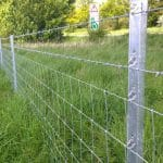 Barbed Wire Clipex Fence in Grassy Field