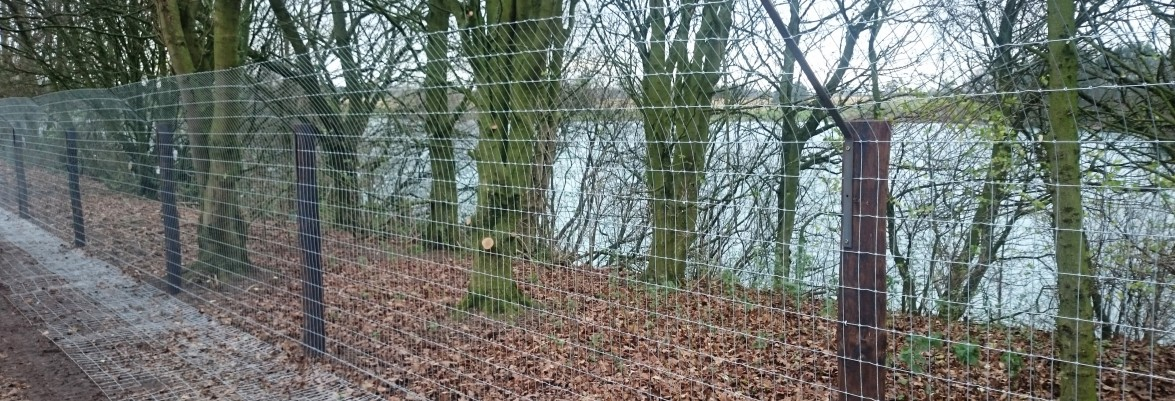 Suddenstrike fencing otter proof fencing