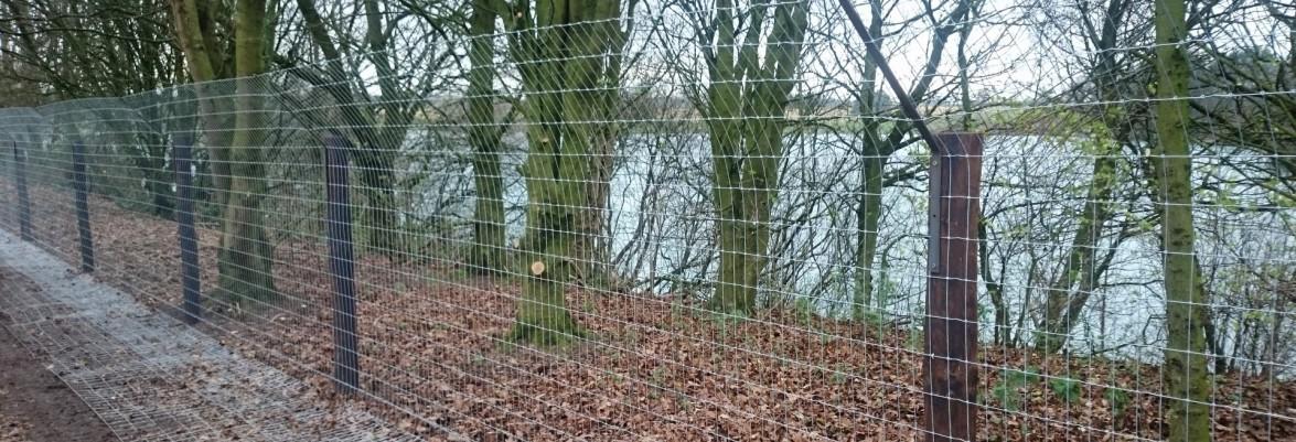 Suddenstrike fencing otter proof fencing