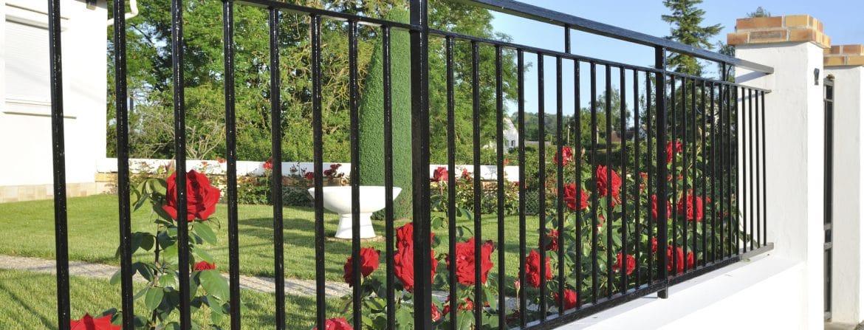 elegant black metal fence in front of red roses