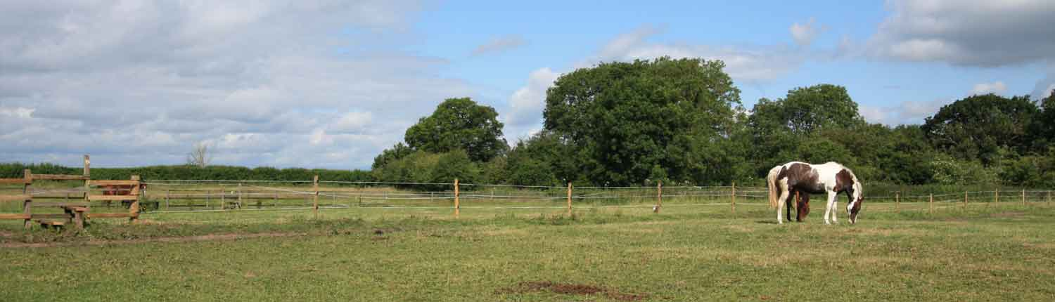 electric-horse-fencing