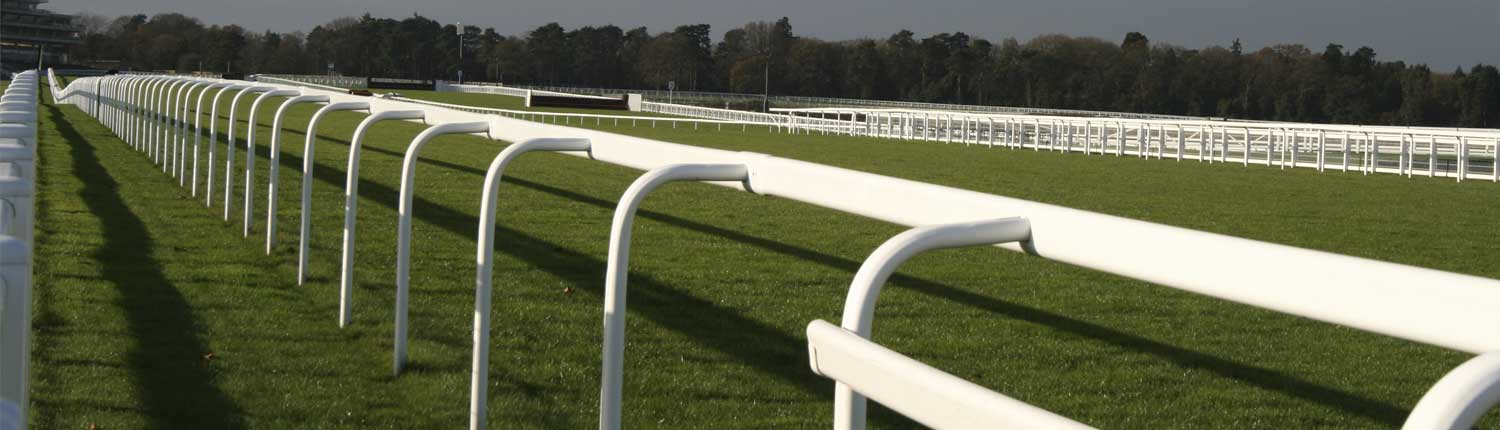 horse-gallops-fencing-rails