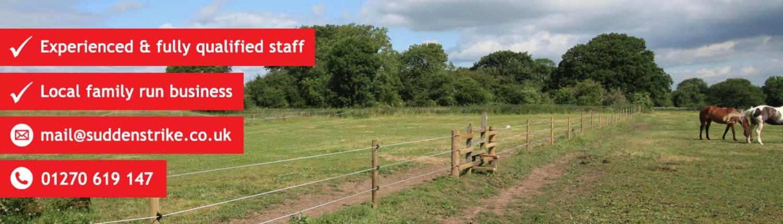 suddenstrike-fencing-horse-slider