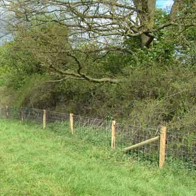 stock fencing repairs - Repairing Your Fence After a Storm