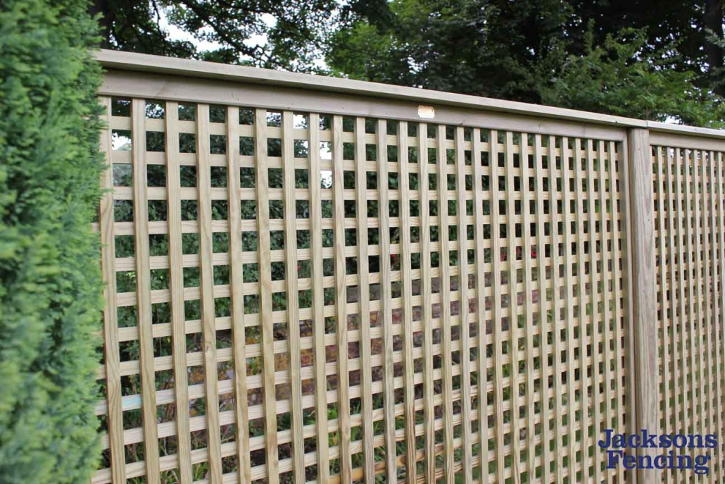 Lattice trellis fence panel